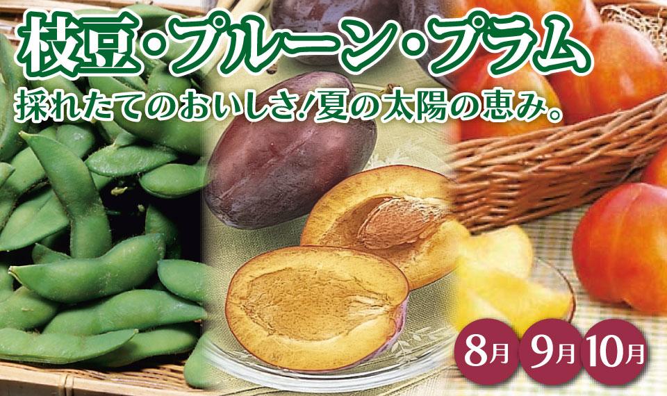 枝豆・プルーン・プラム